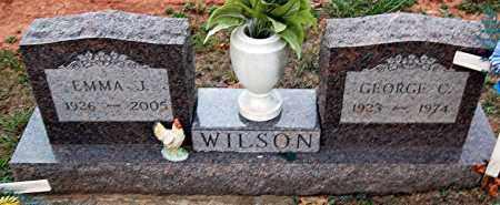 WILSON, EMMA - Meigs County, Ohio | EMMA WILSON - Ohio Gravestone Photos