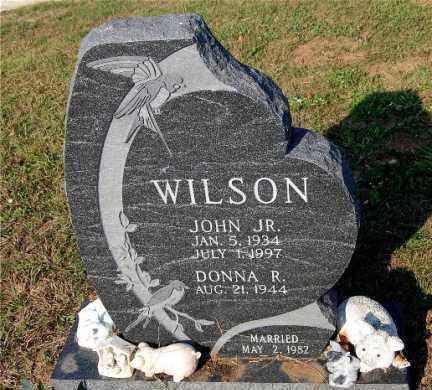 WILSON, JOHN - Meigs County, Ohio | JOHN WILSON - Ohio Gravestone Photos