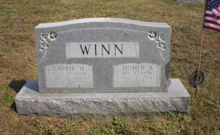 WINN, HOMER A. - Meigs County, Ohio | HOMER A. WINN - Ohio Gravestone Photos
