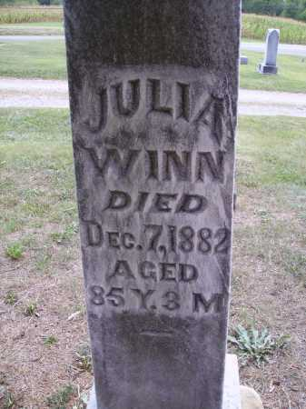 WINN, JULIA - CLOSEVIEW - Meigs County, Ohio   JULIA - CLOSEVIEW WINN - Ohio Gravestone Photos