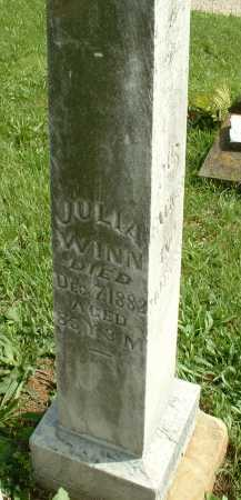 WINN, JULIA - Meigs County, Ohio | JULIA WINN - Ohio Gravestone Photos