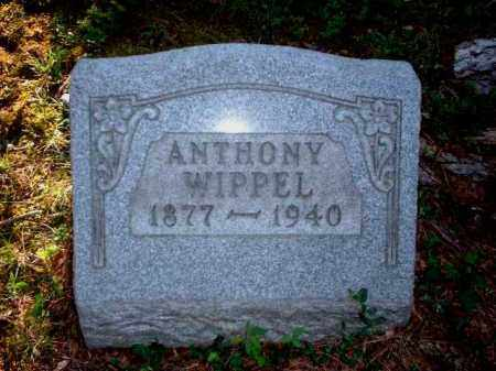WIPPEL, ANTHONY - Meigs County, Ohio | ANTHONY WIPPEL - Ohio Gravestone Photos