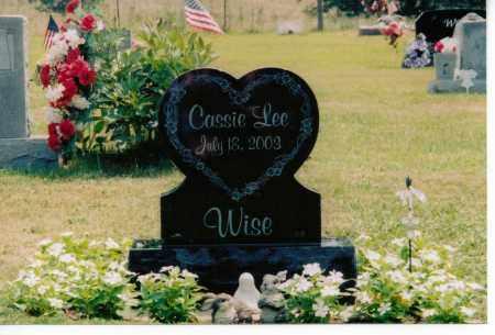 WISE, CASSIE - Meigs County, Ohio | CASSIE WISE - Ohio Gravestone Photos