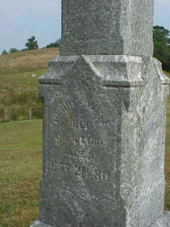 WISE, PERRY - Meigs County, Ohio | PERRY WISE - Ohio Gravestone Photos