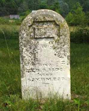 WISEMAN, GEORGE W. - Meigs County, Ohio   GEORGE W. WISEMAN - Ohio Gravestone Photos