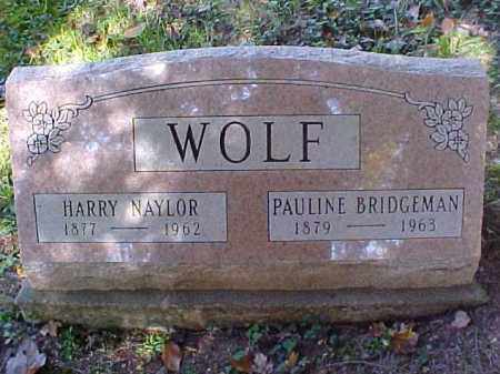WOLF, HARRY NAYLOR - Meigs County, Ohio | HARRY NAYLOR WOLF - Ohio Gravestone Photos