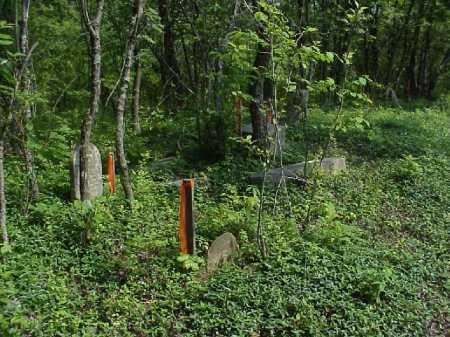 WOLFPEN, CEMETERY SOUTHEAST CORNER - Meigs County, Ohio   CEMETERY SOUTHEAST CORNER WOLFPEN - Ohio Gravestone Photos