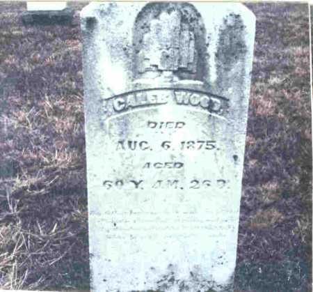 WOOD, CALEB - Meigs County, Ohio | CALEB WOOD - Ohio Gravestone Photos