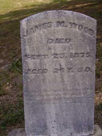 WOOD, JAMES M. - Meigs County, Ohio | JAMES M. WOOD - Ohio Gravestone Photos