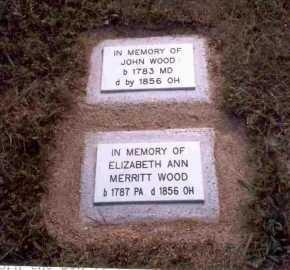 WOOD, ELIZABETH ANN - Meigs County, Ohio   ELIZABETH ANN WOOD - Ohio Gravestone Photos