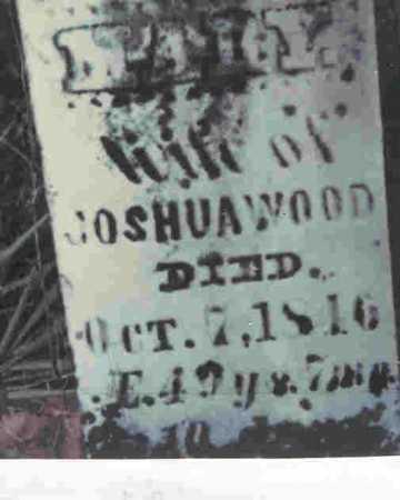 WOOD, MARY - Meigs County, Ohio   MARY WOOD - Ohio Gravestone Photos