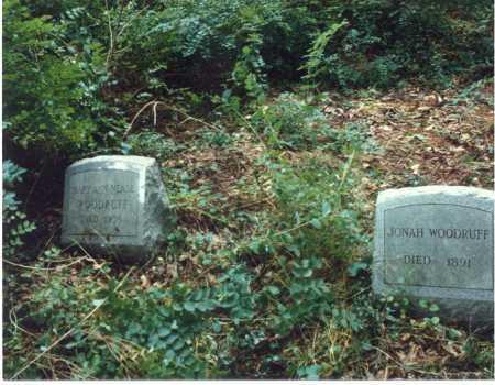 NEASE WOODRUFF, MARY ANN - Meigs County, Ohio | MARY ANN NEASE WOODRUFF - Ohio Gravestone Photos