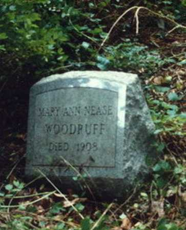WOODRUFF, MARY ANN - Meigs County, Ohio | MARY ANN WOODRUFF - Ohio Gravestone Photos
