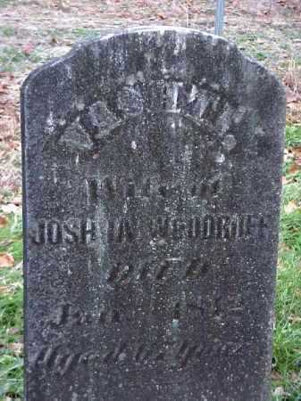 WOODRUFF, VASHTI - Meigs County, Ohio | VASHTI WOODRUFF - Ohio Gravestone Photos