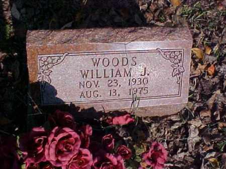 WOODS, WILLIAM J. - Meigs County, Ohio | WILLIAM J. WOODS - Ohio Gravestone Photos