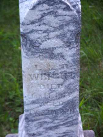 WRIGHT, ANNA M. - Meigs County, Ohio | ANNA M. WRIGHT - Ohio Gravestone Photos