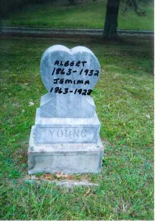 YOUNG, ALBERT - Meigs County, Ohio | ALBERT YOUNG - Ohio Gravestone Photos