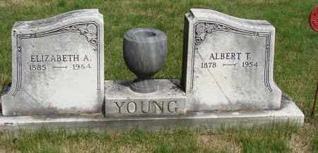 YOUNG, ALBERT T - Meigs County, Ohio | ALBERT T YOUNG - Ohio Gravestone Photos