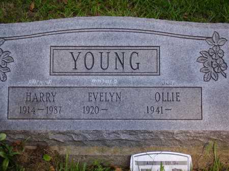YOUNG, EVELYN - Meigs County, Ohio | EVELYN YOUNG - Ohio Gravestone Photos