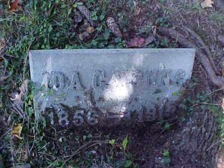 YOUNG, IDA C. - Meigs County, Ohio | IDA C. YOUNG - Ohio Gravestone Photos