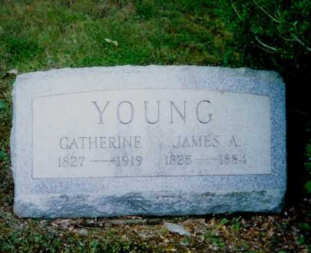 PARTLOW YOUNG, CATHERINE - Meigs County, Ohio | CATHERINE PARTLOW YOUNG - Ohio Gravestone Photos