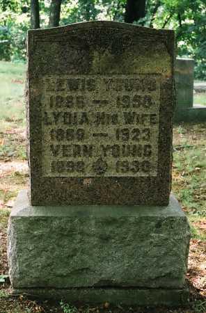LARKINS YOUNG, LYDIA - Meigs County, Ohio | LYDIA LARKINS YOUNG - Ohio Gravestone Photos