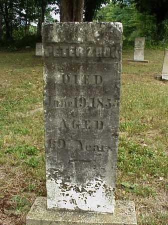ZOOK, PETER - Meigs County, Ohio | PETER ZOOK - Ohio Gravestone Photos