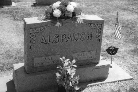 ALSPAUGH, WALTER WINTON - Mercer County, Ohio | WALTER WINTON ALSPAUGH - Ohio Gravestone Photos