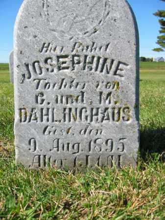 DAHLINGHAUS, JOSEPHINE - Mercer County, Ohio | JOSEPHINE DAHLINGHAUS - Ohio Gravestone Photos