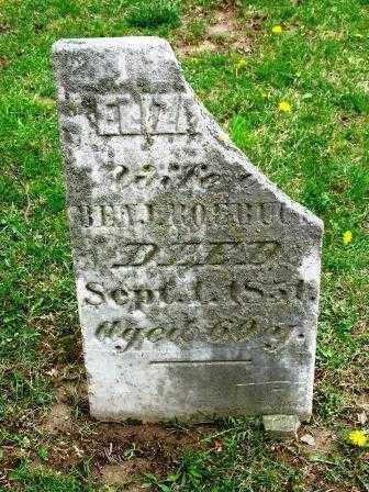 ELIZABETH, ROEBUCK - Mercer County, Ohio   ROEBUCK ELIZABETH - Ohio Gravestone Photos