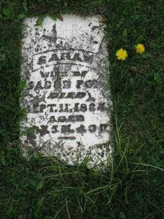 ROBERTS FOX, SARAH - Mercer County, Ohio | SARAH ROBERTS FOX - Ohio Gravestone Photos