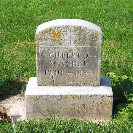 MESCHER, GILBERT J - Mercer County, Ohio   GILBERT J MESCHER - Ohio Gravestone Photos
