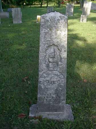 THOMAS, EMILY - Mercer County, Ohio | EMILY THOMAS - Ohio Gravestone Photos