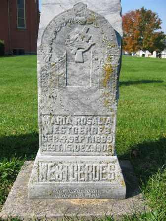 WESTGERDES, MARIA ROSALIA - Mercer County, Ohio | MARIA ROSALIA WESTGERDES - Ohio Gravestone Photos