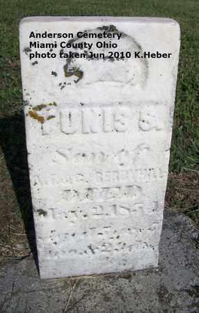 BERRYHILL, TUNIS S - Miami County, Ohio   TUNIS S BERRYHILL - Ohio Gravestone Photos