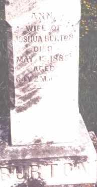 MILLIGAN BURTON, ANN - Miami County, Ohio | ANN MILLIGAN BURTON - Ohio Gravestone Photos