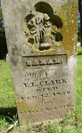 BOWERSOCK CLARK, SARAH - Miami County, Ohio | SARAH BOWERSOCK CLARK - Ohio Gravestone Photos