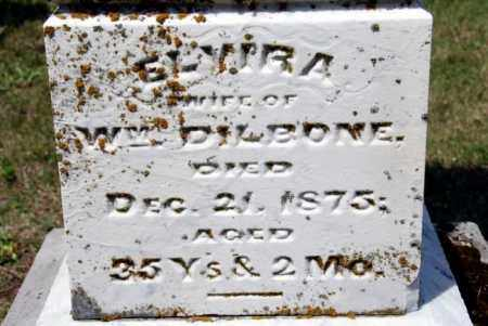 DILBONE, ELVIRA - Miami County, Ohio | ELVIRA DILBONE - Ohio Gravestone Photos