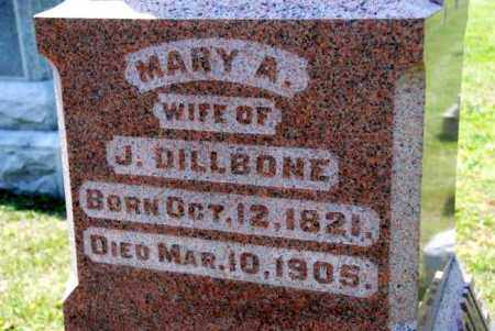 DILLBONE, MARY A. - Miami County, Ohio | MARY A. DILLBONE - Ohio Gravestone Photos