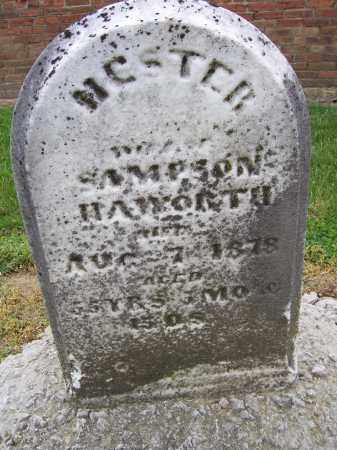 PENNY HAWORTH, HESTER - Miami County, Ohio | HESTER PENNY HAWORTH - Ohio Gravestone Photos