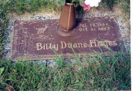 HAYES, BILLY DIANE - Miami County, Ohio   BILLY DIANE HAYES - Ohio Gravestone Photos