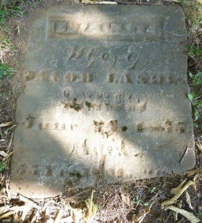 RUDY LANDIS, ELIZABETH - Miami County, Ohio | ELIZABETH RUDY LANDIS - Ohio Gravestone Photos
