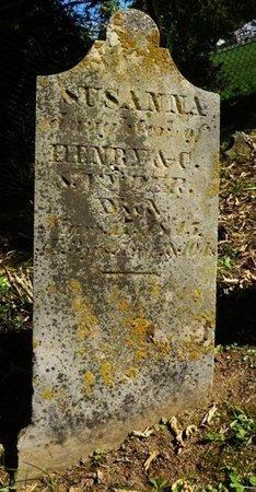 SNYDER, SUSANNA - Miami County, Ohio | SUSANNA SNYDER - Ohio Gravestone Photos