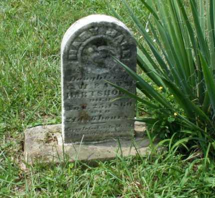 HARTSHORN, MARY JANE - Monroe County, Ohio | MARY JANE HARTSHORN - Ohio Gravestone Photos