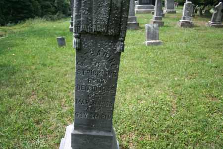 STRICKLING, CATHERINE - Monroe County, Ohio   CATHERINE STRICKLING - Ohio Gravestone Photos