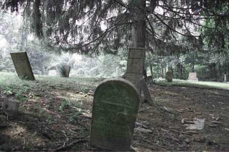 WILLISON, FAMILY - Monroe County, Ohio | FAMILY WILLISON - Ohio Gravestone Photos
