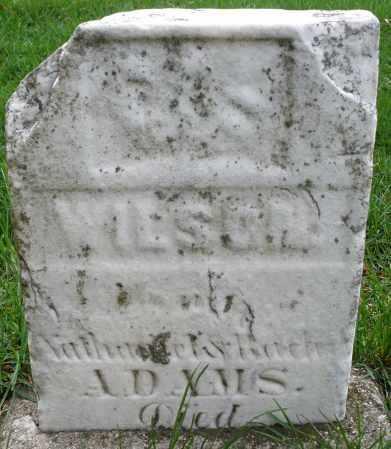 ADAMS, WILSON - Montgomery County, Ohio | WILSON ADAMS - Ohio Gravestone Photos