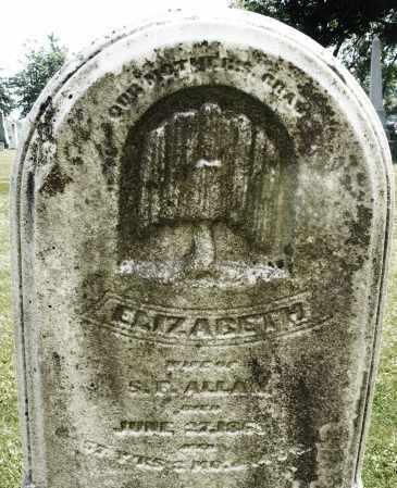 ALLAN, ELIZABETH - Montgomery County, Ohio | ELIZABETH ALLAN - Ohio Gravestone Photos