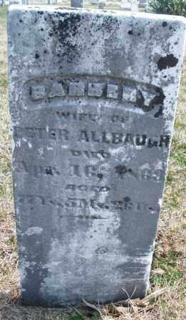 ALLBAUGH, BARBERY - Montgomery County, Ohio | BARBERY ALLBAUGH - Ohio Gravestone Photos