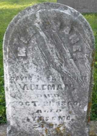 ALLEMAN, MARY JANE - Montgomery County, Ohio | MARY JANE ALLEMAN - Ohio Gravestone Photos